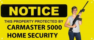 Carmaster 5000 Home Security